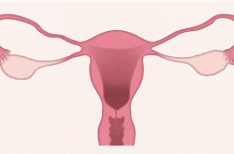 Tulburări cauzate de menopauză: cum le tratezi