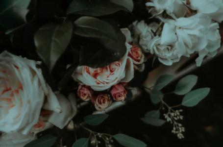 Flori pentru ziua onomastică – idei de cadouri