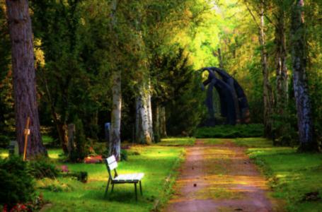 Servicii funerare – locuri de veci