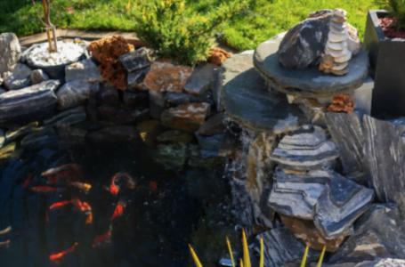 Grădina în stil japonez: 7 idei de luat în seamă